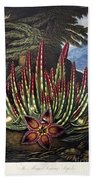Thornton: Stapelia Beach Towel