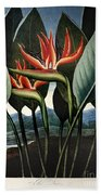 Thornton: Strelitzia Beach Towel