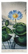 Thornton: Water Lily Beach Towel