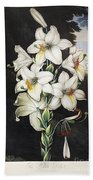 Thornton: White Lily Beach Towel