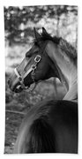 Thoroughbred - Black And White Beach Towel