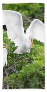 Three Birds Of A Feather Flock Together Beach Towel