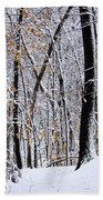 Three Creeks Conservation Area - Winter Beach Towel