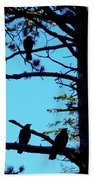 Three Crows In A Tree Beach Towel