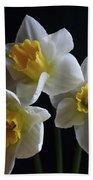 Three Daffodil Beach Towel