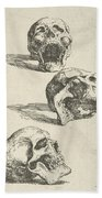 Three Human Skulls Beach Towel