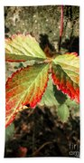Three Leaves Beach Towel