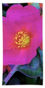 Three Lovely Flowers Beach Towel