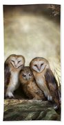 Three Owl Moon Beach Towel by Carol Cavalaris