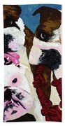 Three Playful Bullies Beach Towel