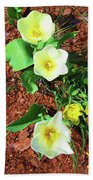 Three White Tulips Painting Beach Towel