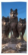Three Wolves Watching You Beach Towel