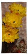Three Yellow Cactus Flowers Beach Towel