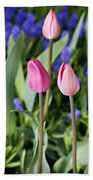 Three Young Tulips Beach Towel