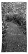Through The Forest Canopy Black And White Beach Towel