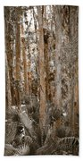 Through The Forest Trees Beach Towel