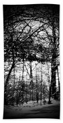Through The Lens- Black And White Beach Towel