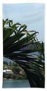 Through The Palms Beach Towel