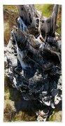 Tidal Sculpture Beach Towel