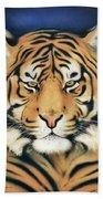 Tiger At Midnight Beach Towel