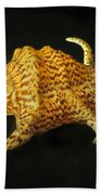 Tiger Conch Seashell Beach Towel