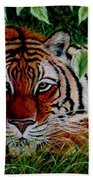 Tiger In Jungle Beach Towel