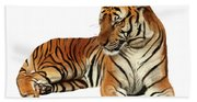 Tiger In Repose Beach Towel