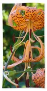 Tiger Lilies Art Prints Canvas Summer Tiger Lily Flowers Beach Towel