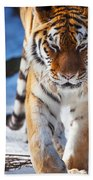 Tiger Strut Beach Towel