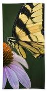 Tiger Swallowtail 2 Beach Sheet