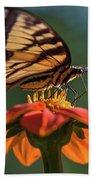 Tiger Swallowtail - 3 Beach Sheet