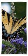 Tiger Swallowtail 3 Beach Sheet