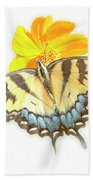 Tiger Swallowtail Butterfly, Cosmos Flower Beach Towel
