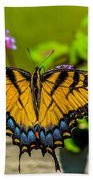 Tiger Swallowtail Butterfly By Fence Beach Towel