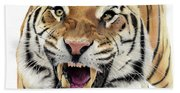 Tigers Pace Beach Towel