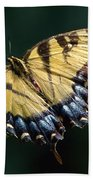 Tigress And Verbena Beach Towel