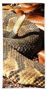 Timber Rattlesnake Horizontal Beach Towel
