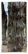 Timber Textures Lv Beach Towel