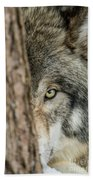 Timber Wolf Picture - Tw285 Beach Towel