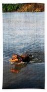 Time To Fetch Beach Towel by Joan  Minchak