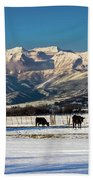 Timpanogos From The North Fields Beach Towel