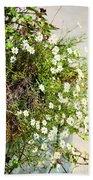 Tiny Flowers Beach Towel
