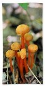 Tiny Orange Mushrooms Beach Towel