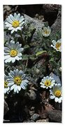 Tiny White Flowers In The Gravel Beach Towel