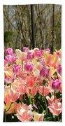 Tiptoe Among The Tulips Beach Towel