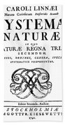 Title Page, Systema Naturae, Carl Beach Towel