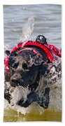 To The Rescue Beach Towel