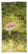 Toadstool Grows On A Forest Floor. Beach Towel