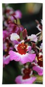 Tolumnia Pink Panther Orchid Beach Towel