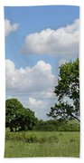 Tolworth Court Nature Reserve In Surrey Beach Towel
